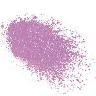 Violet Femme