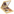 Napoleon Perdis Exuberant Eye and Cheek Palette		 by Napoleon Perdis