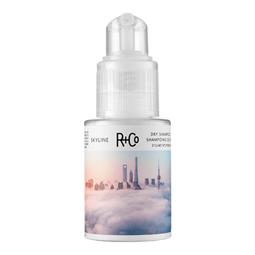 R+Co Skyline Dry Shampoo Powder by R+Co