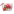 Clarins Double Serum & Super Restorative Daily Duo Set by Clarins