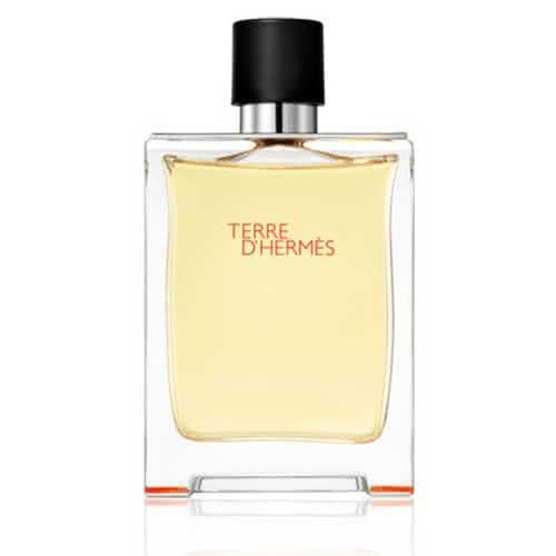Hermès Terre d'Hermès Eau de Toilette - 200ml by Hermès
