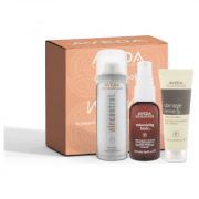 Aveda Hair Essentials Styling Kit: Volume