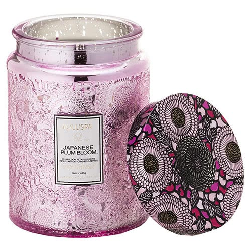 Voluspa Japanese Plum Bloom Jar Candle by Voluspa