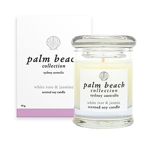 Palm Beach Collection Mini - White Rose & Jasmine