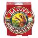 Badger Balm Sore Muscle Rub Balm by Badger Balm