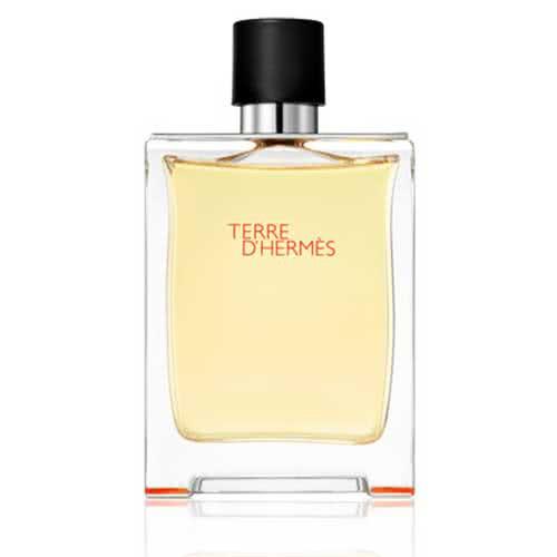 Hermes Terre d'Hermes Eau de Toilette - 100ml by Hermes