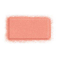 MAKE UP FOR EVER Artist Face Color - B302 Shimmery Peach by MAKE UP FOR EVER