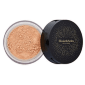 Elizabeth Arden Picture Perfect Blurring Loose Powder