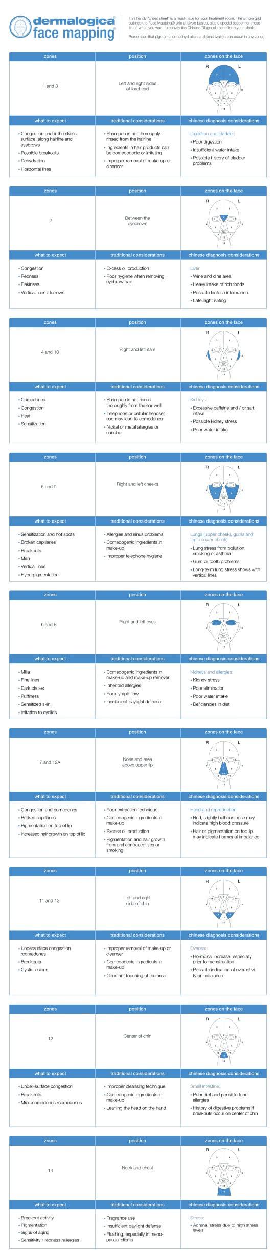 Dermalogica Skin Analysis What Is Face Mapping Inez Ultra Defining Waterproof Mascara Blue